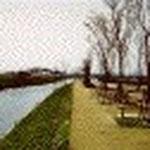 花宗川右岸遊歩道桜並木道(大木)花宗川の1300年の歴史を後生に伝える事も意識して、水系地図を設し、桜の中では強いと言われ、歴史をもつヤマ桜を植えています。