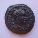 bronze, Troade: ALEXANDRIE 6.95 g, Avers: IMP LICIN GALLIENO