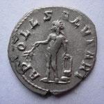 Revers: AP-OLL - SALVTARI, Apollon nu dbt à g, tenant une branche de laurier main droite et une lyre main g sur un rocher .