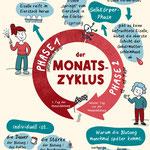 Monatszyklus (Aufklärungs-Lehrmaterial)
