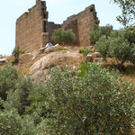 Der Athenatempel
