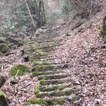 湯袋峠途中の石段