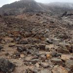 茶臼岳山頂まではこんな状態の道です