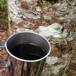 山の湧水で飲むコーヒーは美味い