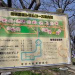桜堤の案内板