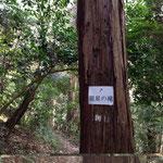 龍星の滝、名前はカッコいいですが・・・