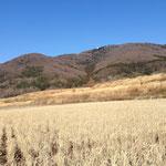 田園から眺める宝篋山