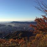 スカイツリーや富士山見えました