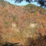 山肌の紅葉がすごく綺麗です