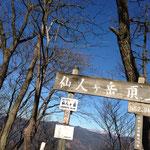 ついに到着!仙人ヶ岳山頂。天気が良いです