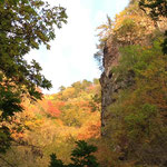時折見せる山の紅葉