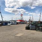 Hafen für Fischer