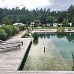 Naturwasser Badeteich