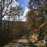Wandern im Urfttal