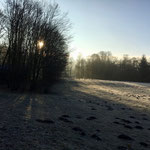 Frostige Wiese des Kurparks am SP