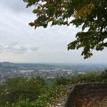 Burgblick auf das Rheintal
