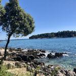 Blick auf Insel bei Vrsar