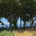 Ostseeblick an der Steilküste