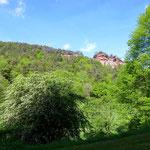 Haustein mit Pfalzblick