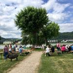 Gottesdienst auf der Rheinwiese