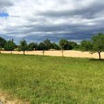 Sturmfront auf dem Weg nach Bruchsal