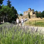 Lourmarin: Lavendel und Schloß