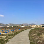 ... einem Weinanbaugebiet in einer ansprechenden Landschaft