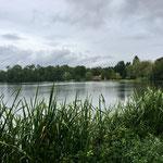 Bad Waldsee, der Stadtsee