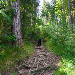 Wanderweg am Alpspitzberg