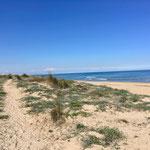 wunderschöner Strand mit Dünen