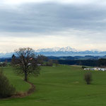 Blick auf SP in Amtzell