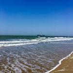 Strand in Cadzand