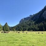 Radtour in die Berge