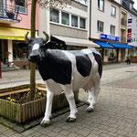 Das Viech weist auf seinen Metzger in Gemünd hin
