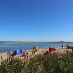Strandleben auf Poel