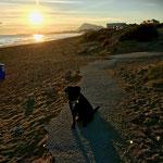 ... Sonnenaufgang, reges Strandleben bei bestem Sommerwetter