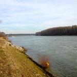 Rhein Richtung Mannheim