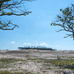 "#004 - Nationalpark ""Schoorlse Duinen"", NL"