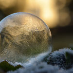 #016 - iced bubble 04