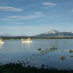 Matin sur le lac de Puerto Natales
