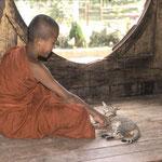 Jeune moine -  Birmanie