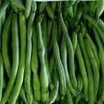 市内産インゲン豆