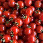 敦賀のトマト職人2代目作のミニトマト