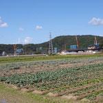 井川の生産者さんの圃場。新幹線工事中