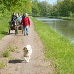 Le long du canal de Bourgogne