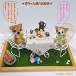 柴犬ちゃん達のお茶会