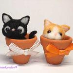 植木鉢の猫さん