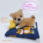 カエル足の柴犬さんとモヒカンピヨちゃん