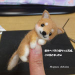 この指とまった柴犬ちゃん