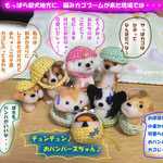 編みカゴブームの犬たちw